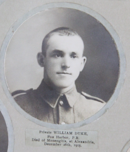 Photo of WILLIAM DUKE– In memory of the men and women from Newfoundland who went away to war and did not come home. From the  Rooms Archives and Museum St Johns Newfoundland. Submitted for the project, Operation Picture Me