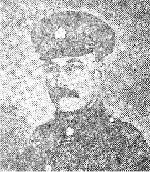 """Newspaper Clipping– Following was caption to George's photo, when published in The Orcadian newspaper   in 1917: """"Private George Esslemont, third son of the late Mr. George Esslemont, and of Mrs. Esslemont, Millhouse, Sandwick, now serving with the Canadian Expeditionary Force in France"""". Note name spelling difference."""
