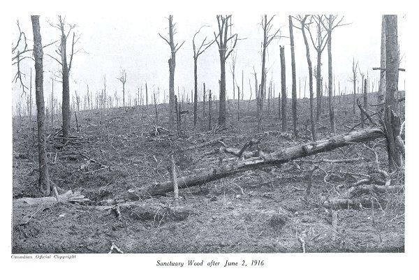 Photo of Sanctuary Wood