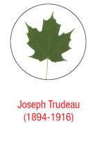 Biography– Louise Trudeau, ATA 001, and Jean-Marc Trudeau ATA 015, Association des Truteau d'Amérique 2014. La Charpente, Vol. VII, no 2, août 2014, Charny. 20 pages.