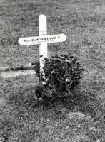 Marqueur de tombe temporaire – Soumis dans le cadre du projet: Operation Picture Me