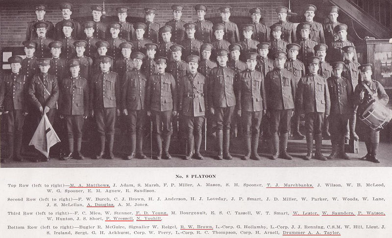 101st Battalion, B Company, 8th Platoon
