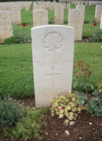 Grave Marker– In memory of the students of R H King Academy (formally Scarborough  Collegiate Institute) who went to war and did not come home. Submitted for the project Operation Picture Me.