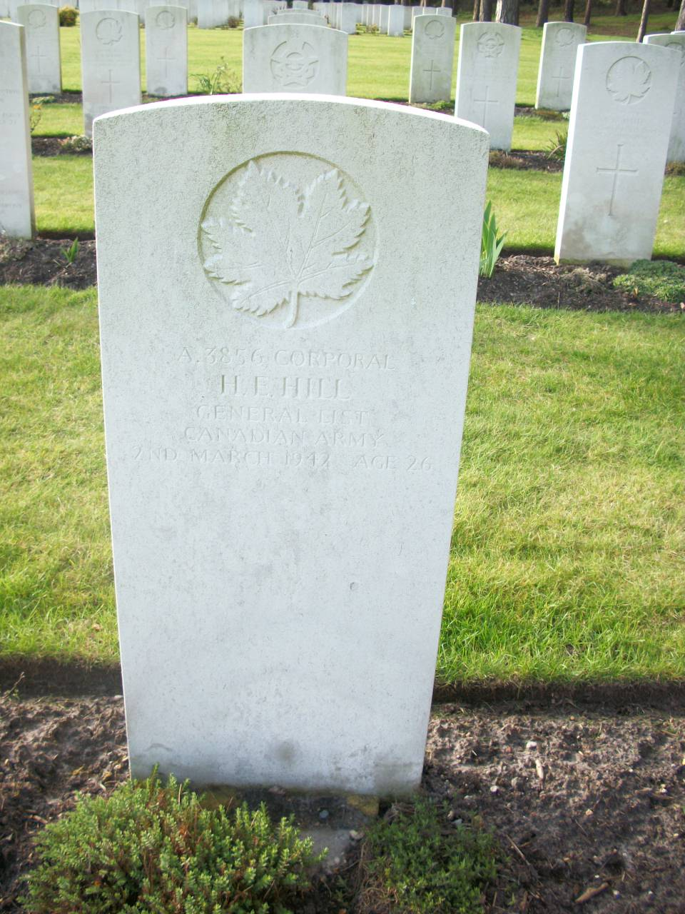 Grave Marker– Memorialized on the pages of the Globe and Mail. Submitted for the project, Operation Picture Me