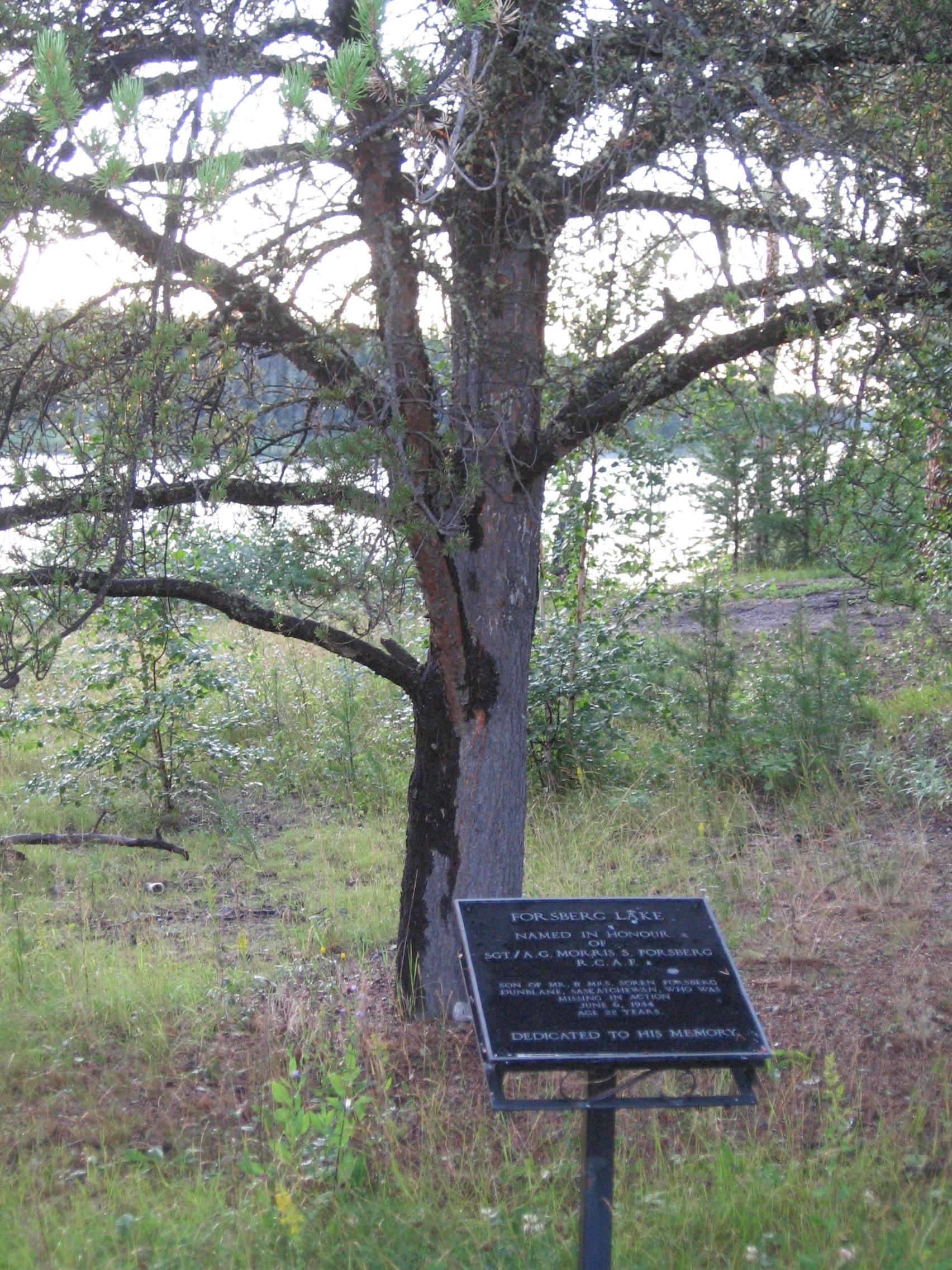 Memorial Plaque– Photo of memorial plaque placed in memory of M.S. Forsberg at Forsberg Lake, Northern Saskatchewan