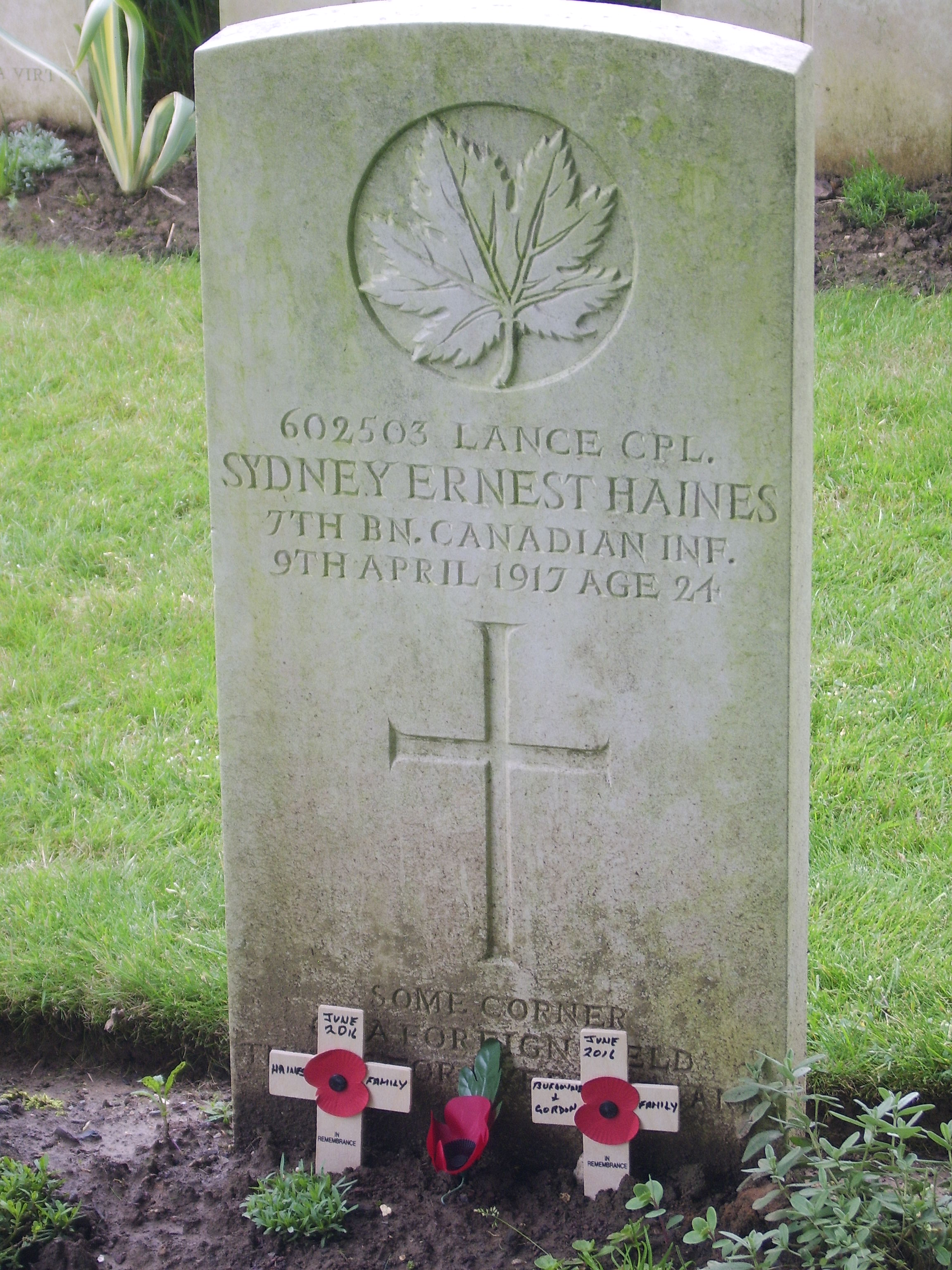 Grave Marker– Crosses of Remembrance placed at Uncle Sydney's grave at Arras Road Cemetery, June 2016 (John and Christine Gordon)