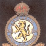 """RAF Squadron # 353 Badge– A Bengal Tiger rampant """" Fear Naught in Unity """""""