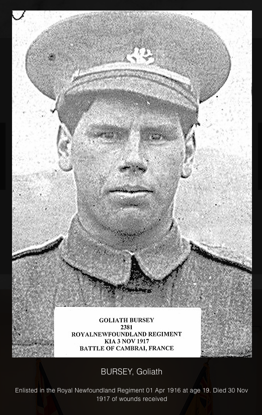 Photo of GOLIATH BURSEY– In memory of the men and women from the Clarenville, Newfoundland area who went away to war and did not come home. Submitted on behalf of the Clarenville Legion (Branch 27) for the project, Operation Picture Me
