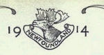 Royal Newfoundland Regiment– In memory of the men would served in the Royal Newfoundland Regiment during World War I and did not return home.  Submitted for the project Operation: Picture Me.