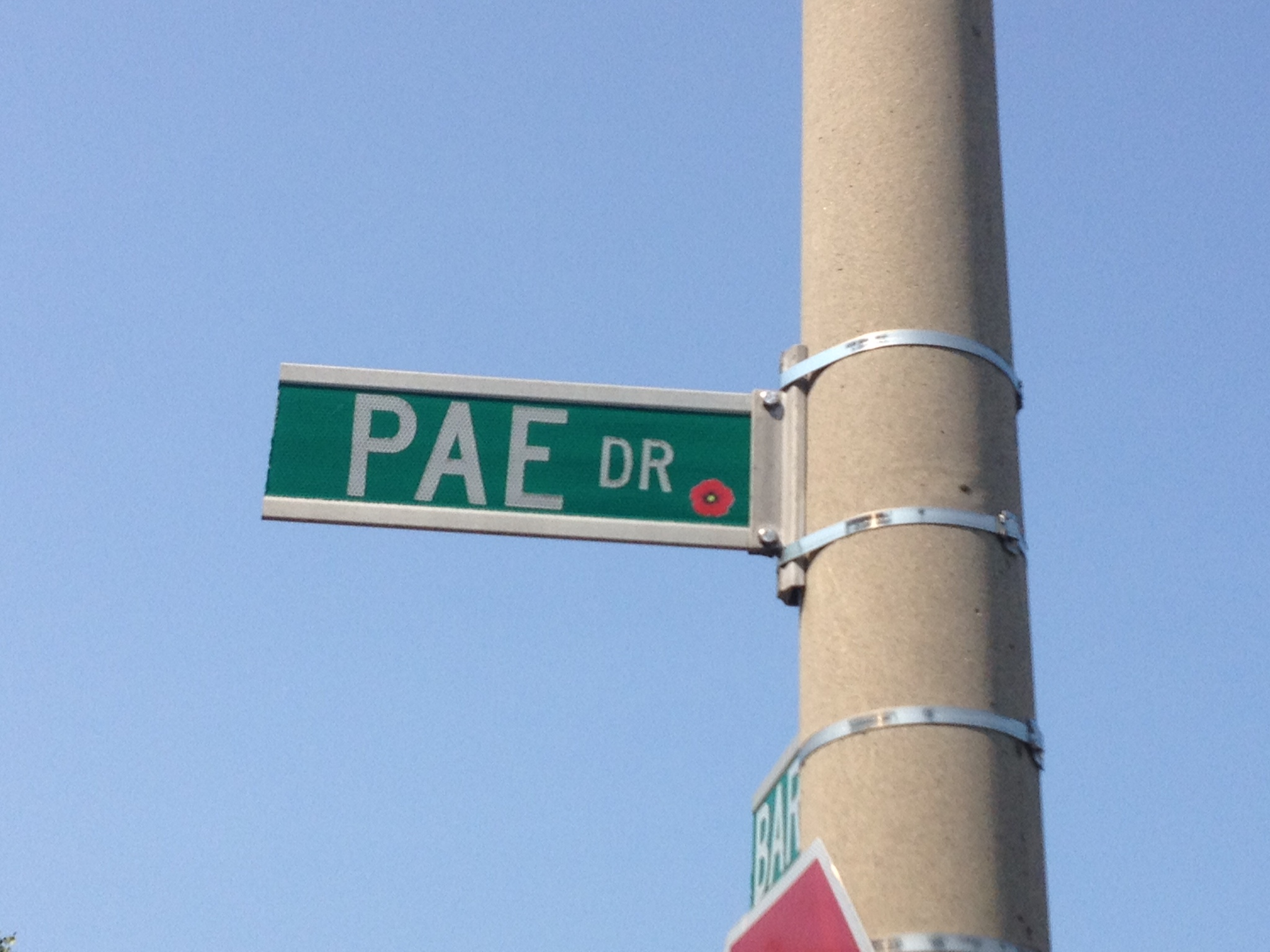 Street sign– Barrie street named in honour of Lieutenant Richard Peter Pae with a poppy.