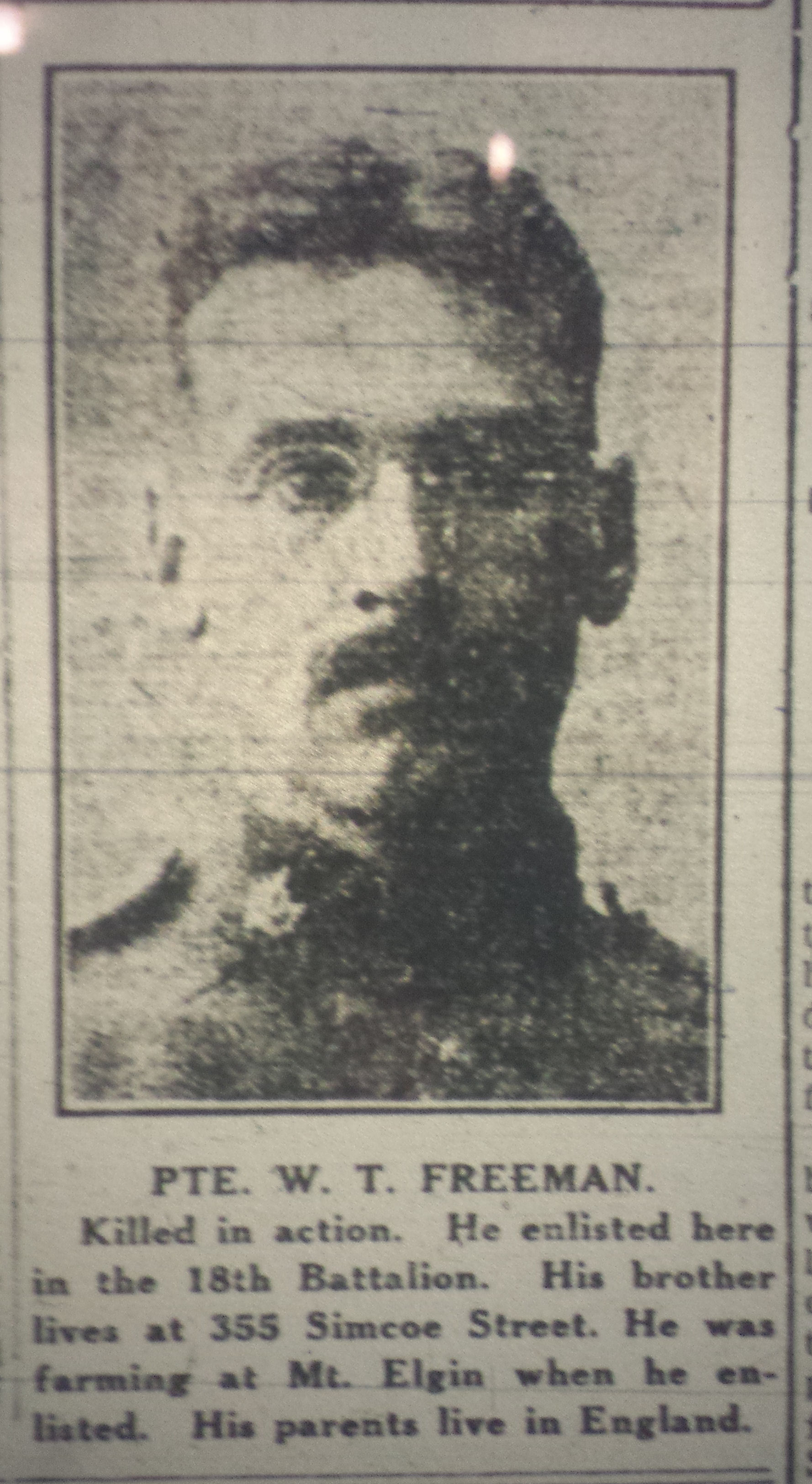 Newspaper Clipping– Photo of Pte. W.T. Freeman from The Daily Sentinel-Review, Woodstock, Ontario - Tuesday May 1, 1917.
