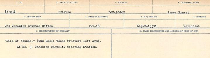 Circumstances of death registers– Source: Library and Archives Canada. CIRCUMSTANCES OF DEATH REGISTERS, FIRST WORLD WAR. Surnames: Don to Drzewiecki. Microform Sequence 29; Volume Number 31829_B016738. Reference RG150, 1992-93/314, 173. Page 81 of 1076.