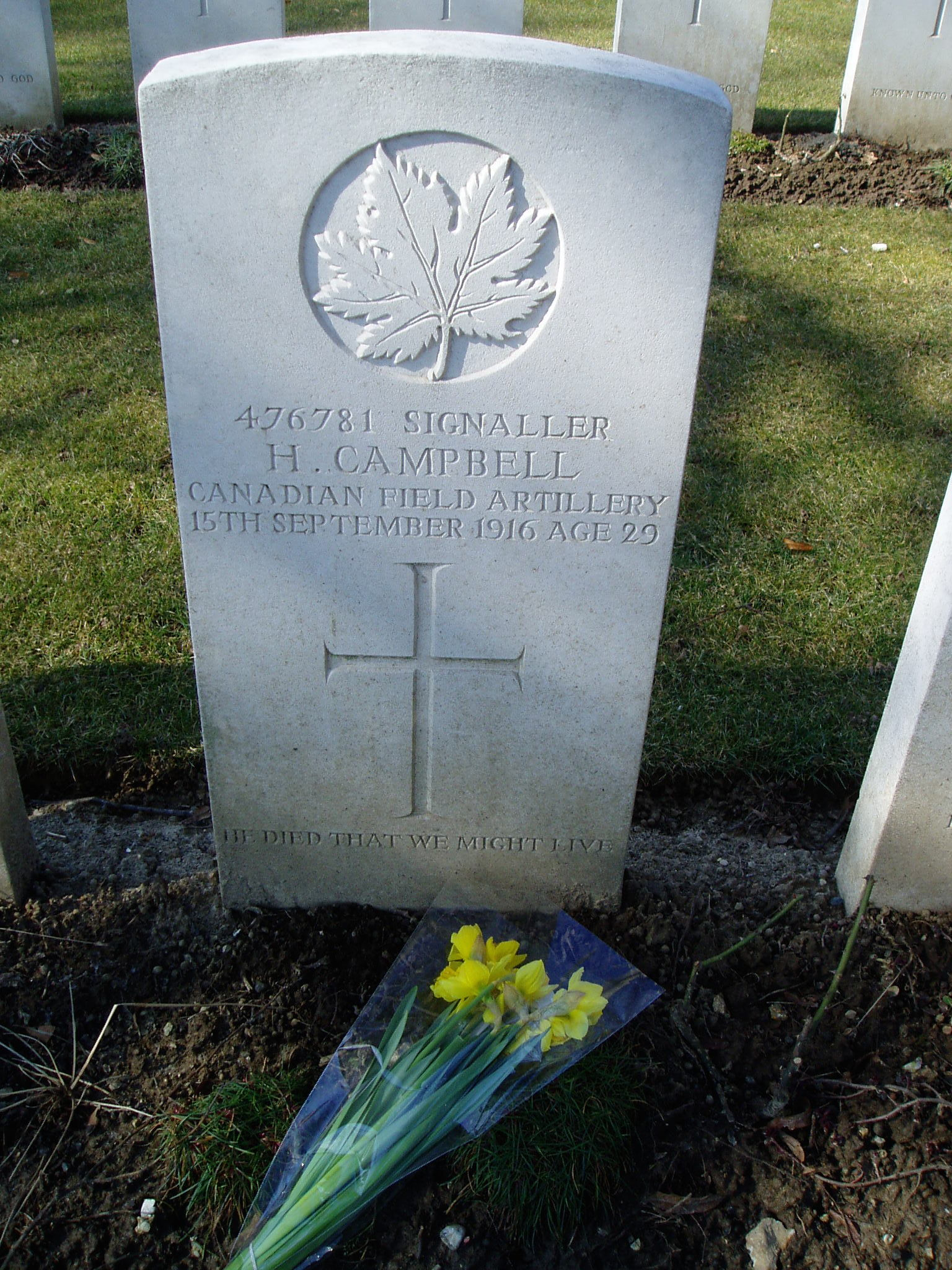 Grave Marker– View of part of Delville Wood Cemetery with Hugh Campbell's headstone in the foreground, visited by William Campbell in 2006.