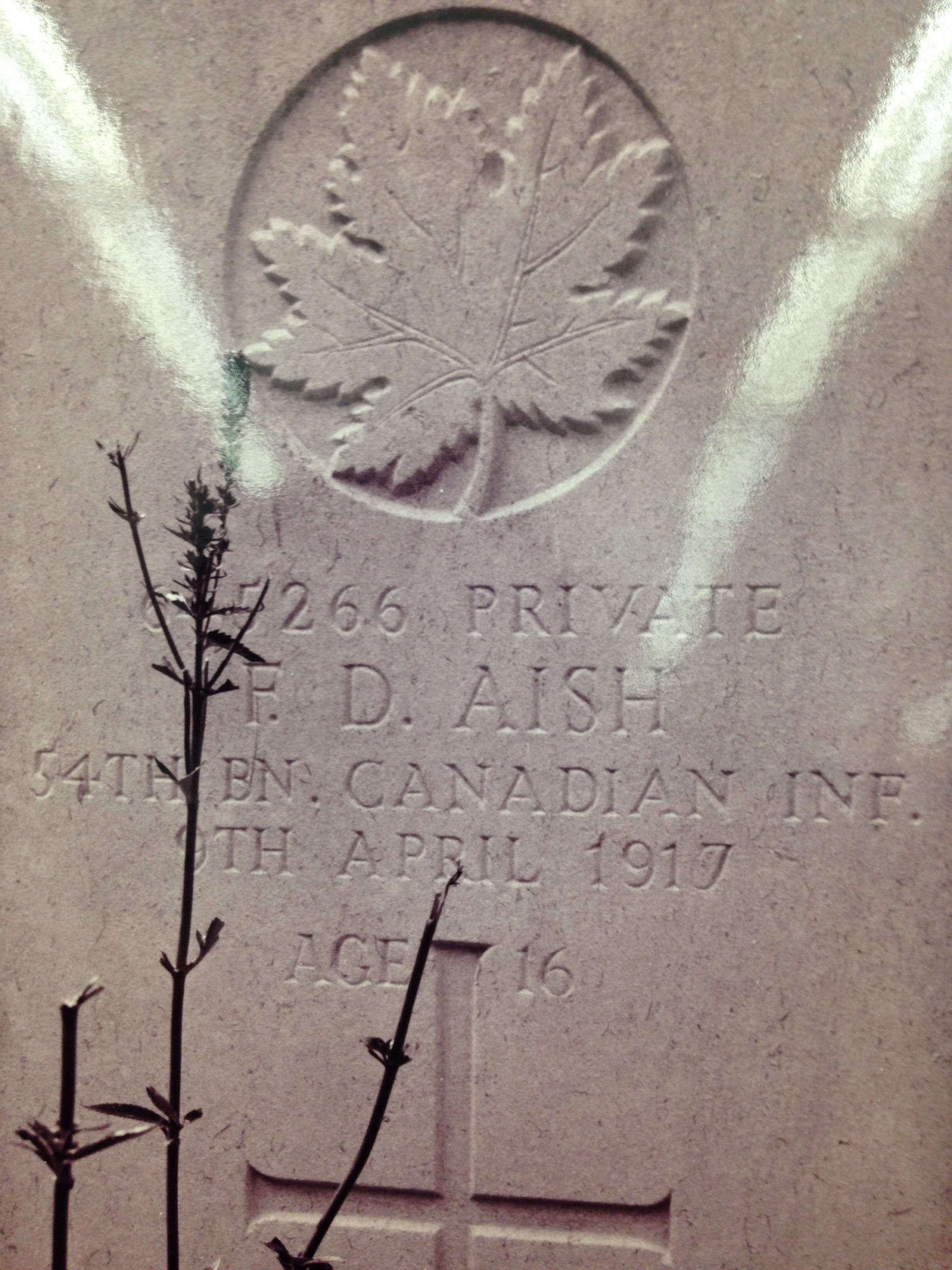 Grave Marker– RIP Private Frank Aish! Thank you for your sacrifice. God Bless.