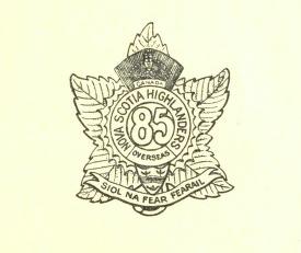 Insigne
