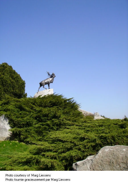 Beaumont-Hamel (Newfoundland) Memorial