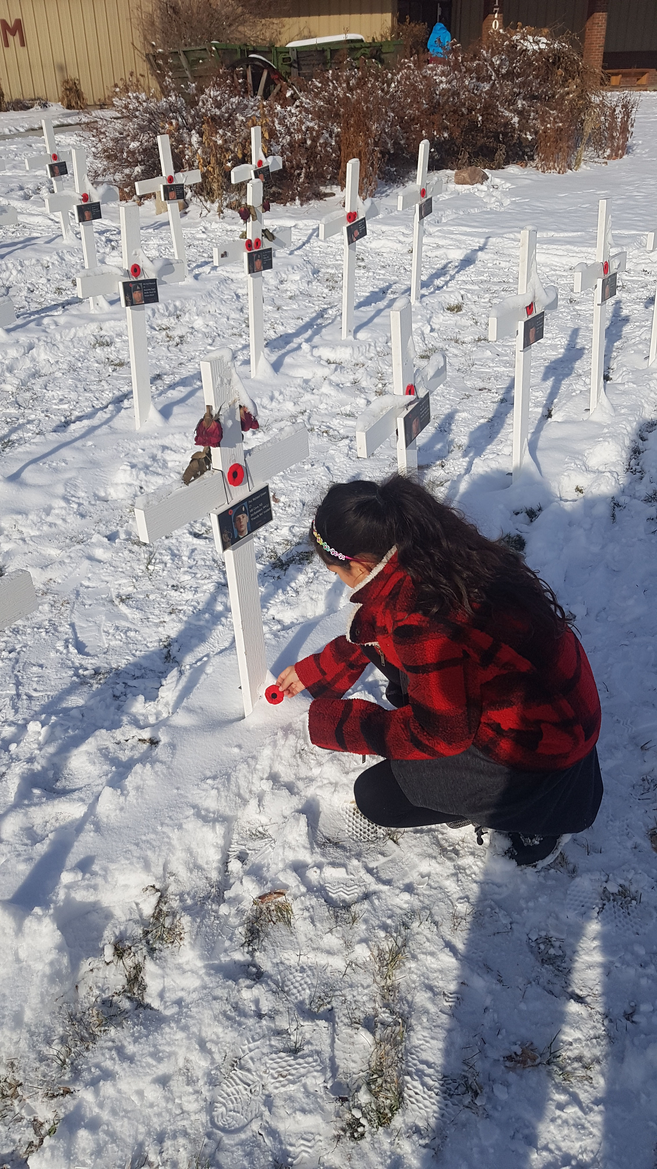 Paying respects– With a grateful heart my daughter Aurora Aguilar placing her poppy at a cross in honor of private Green in Airdrie Alberta Nov 11 2019.