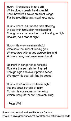 In Memory of Fallen Snowbirds