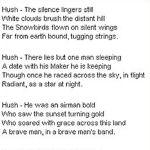 Poem– Tribute to fallen Snowbirds pilot Shawn McCaughey.